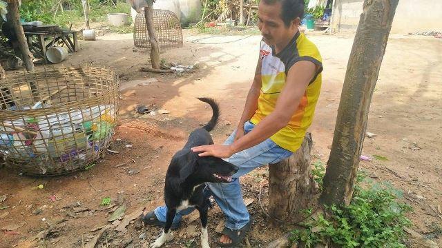https: img.okezone.com content 2020 12 20 612 2331020 kisah-ping-pong-anjing-cacat-yang-selamatkan-bayi-dikubur-hidup-hidup-oleh-orangtuanya-nnbeKsY3CR.jpg