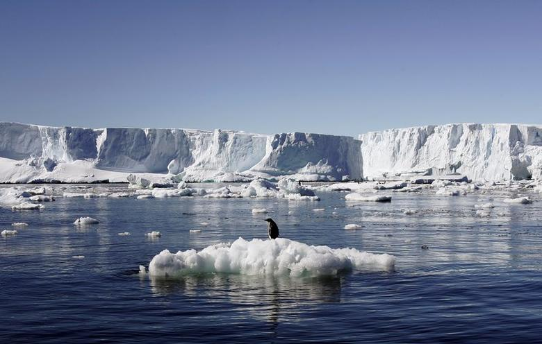https: img.okezone.com content 2020 12 22 18 2332182 kasus-covid-19-untuk-pertama-kalinya-dilaporkan-di-antartika-7OTI7uW3B6.jpg