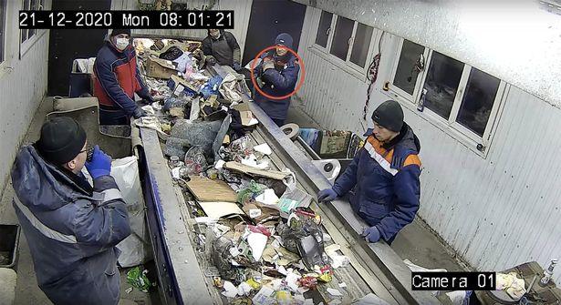 https: img.okezone.com content 2020 12 25 18 2333756 nyaris-masuk-mesin-pengolah-sampah-kucing-diangkat-jadi-wakil-menteri-perlindungan-hewan-waBpdUVKD9.jpg