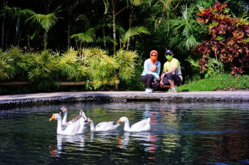 https: img.okezone.com content 2020 12 28 408 2335125 berkunjung-ke-lembah-tumpang-resort-tempat-candi-borobudur-dan-gito-bersatu-X5Bg66HA6q.jpg