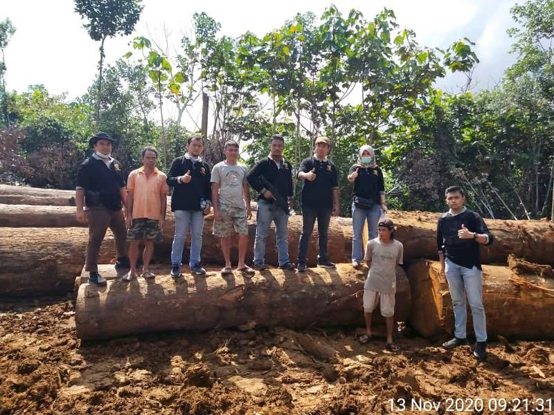 https: img.okezone.com content 2020 12 30 337 2336652 bareskrim-ungkap-illegal-logging-di-hutan-kalimantan-tengah-b21ZiDMmGT.jpg