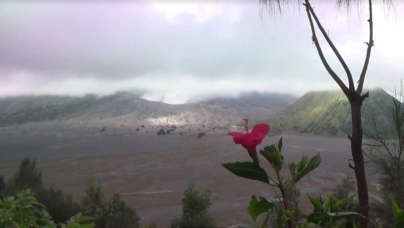 https: img.okezone.com content 2021 01 04 519 2338834 sempat-erupsi-gunung-bromo-aman-dikunjungi-asal-QyOiZTFQQZ.jpg