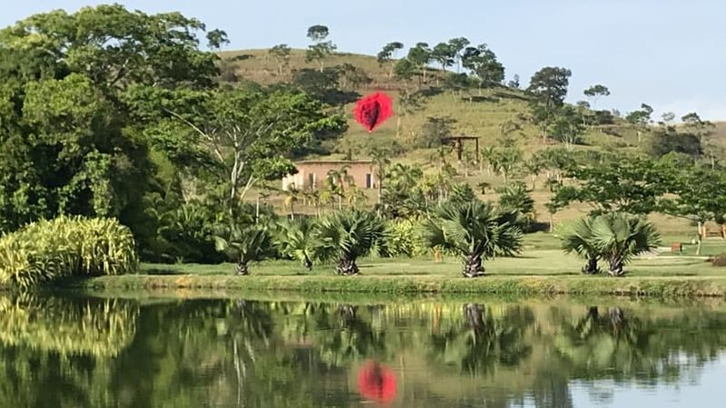 https: img.okezone.com content 2021 01 07 406 2340791 waduh-viral-patung-raksasa-mirip-miss-v-dibangun-di-brasil-kMkcQk4IQa.jpg
