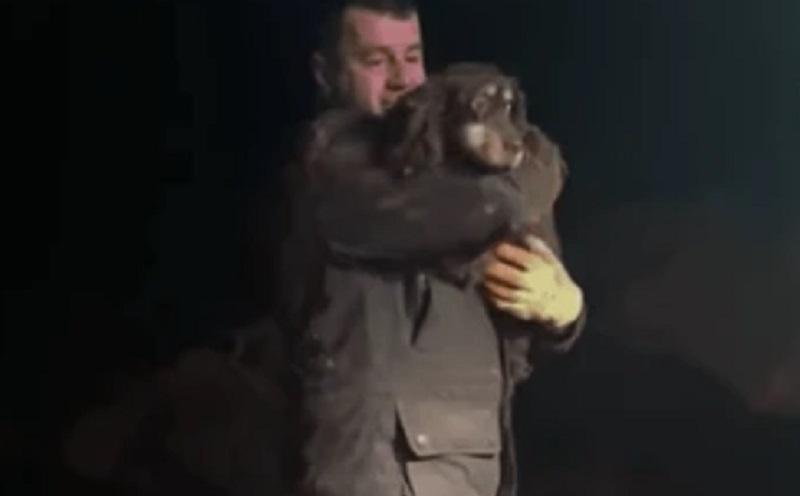 https: img.okezone.com content 2021 01 11 612 2342549 viral-pria-selamatkan-anjing-yang-terjebak-dalam-lubang-lebih-dari-30-jam-gxs0g30qNI.jpg