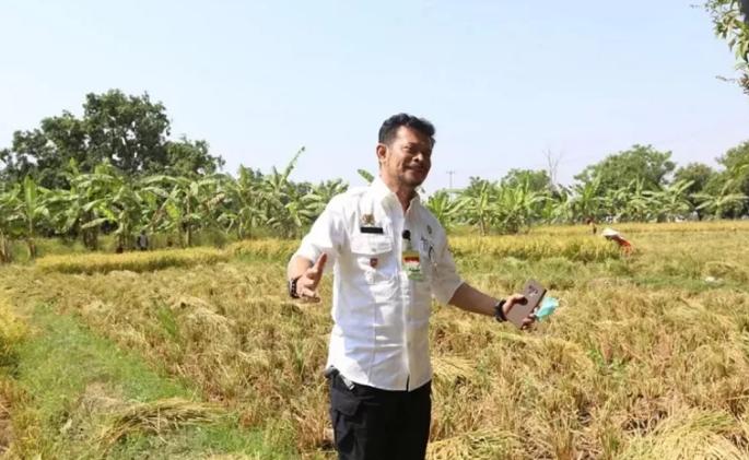 https: img.okezone.com content 2021 01 13 320 2343979 pakai-teknologi-mentan-ingin-pertanian-indonesia-jadi-mandiri-7AZmXVgx7p.png