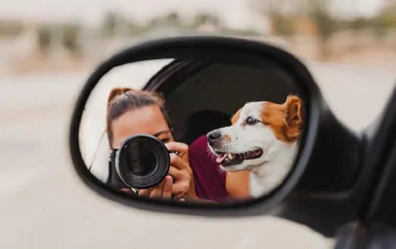 https: img.okezone.com content 2021 01 19 455 2347106 4-bisnis-yang-cocok-untuk-pecinta-hewan-cuan-di-depan-mata-mF0OArT4pA.jpg