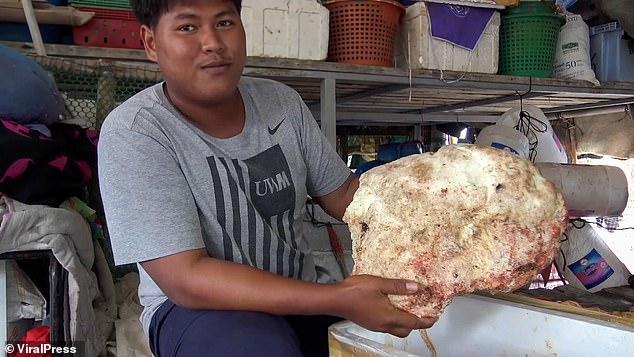 https: img.okezone.com content 2021 01 20 18 2347528 nelayan-thailand-temukan-ambergris-7-kg-seharga-4-miliar-dixVjEmRp6.jpg