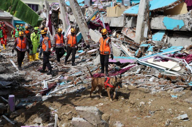https: img.okezone.com content 2021 01 21 337 2348281 185-bencana-terjadi-di-indonesia-sepanjang-januari-2021-qhQK0ThwNg.jpg
