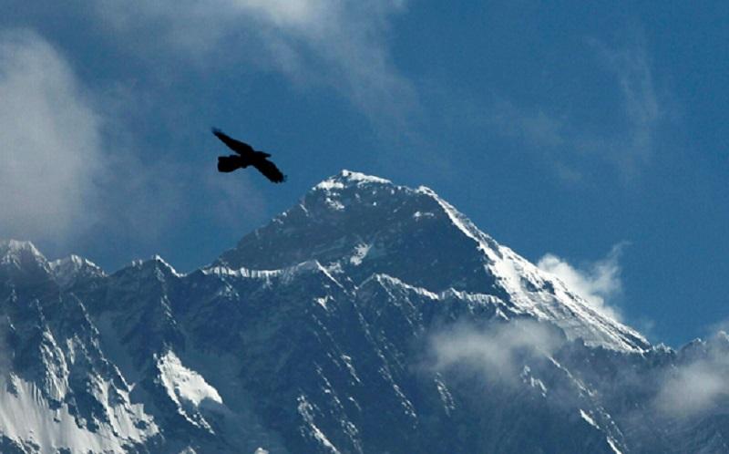 https: img.okezone.com content 2021 01 23 612 2349531 kampanye-soal-lingkungan-sampah-gunung-everest-siap-disulap-jadi-karya-seni-bmrdqnWq5H.jpg