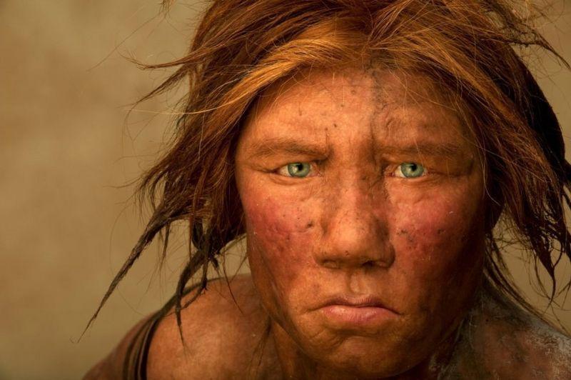https: img.okezone.com content 2021 01 26 18 2350717 menelusuri-kehidupan-seks-kaum-neanderthal-apa-manusia-purba-berciuman-MYhgJ76c8a.jpg