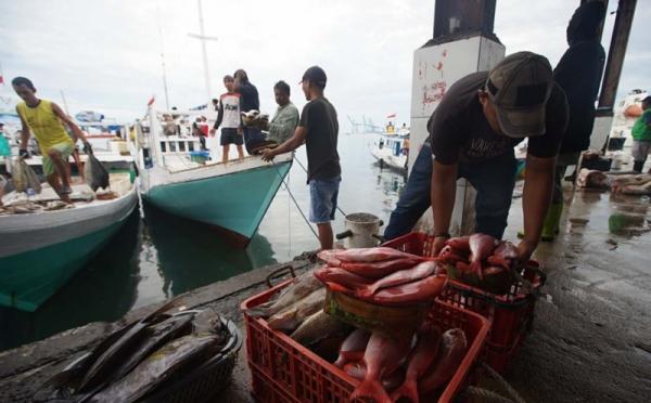 https: img.okezone.com content 2021 01 29 320 2352864 produk-ikan-tuna-dan-cakalang-indonesia-segera-masuk-pasar-amerika-dan-eropa-TFHGoGd6wY.jpg
