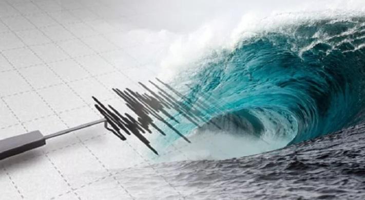 https: img.okezone.com content 2021 01 29 337 2353119 potensi-tsunami-dan-gempa-dahsyat-terulang-ini-penjelasan-lipi-RCXC98U4Xy.jpg