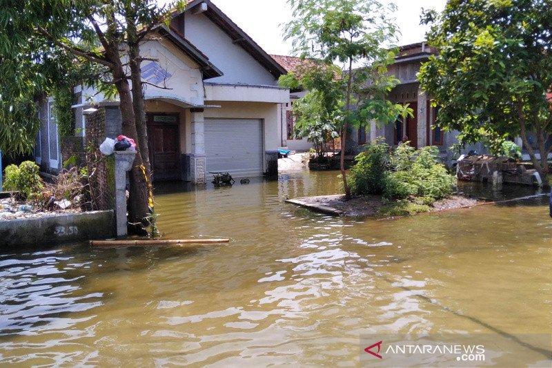 https: img.okezone.com content 2021 02 05 512 2356857 banjir-di-kudus-makin-meluas-warga-mengungsi-ke-sekolah-dasar-Jt0xqy9XAQ.jpg
