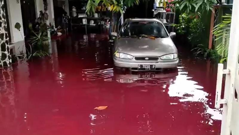 https: img.okezone.com content 2021 02 06 512 2357684 heboh-desa-jenggot-di-pekalongan-banjir-darah-FEkyAeIJgh.jpg