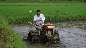 https: img.okezone.com content 2021 02 08 1 2358334 rawan-dilanda-banjir-petani-cirebon-didorong-ikut-autp-VFj1rTuice.jpg