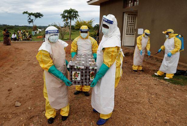 https: img.okezone.com content 2021 02 08 18 2358444 pakar-lingkungan-umat-manusia-akan-hadapi-pandemi-baru-mematikan-NS0dsuJAL3.jpg