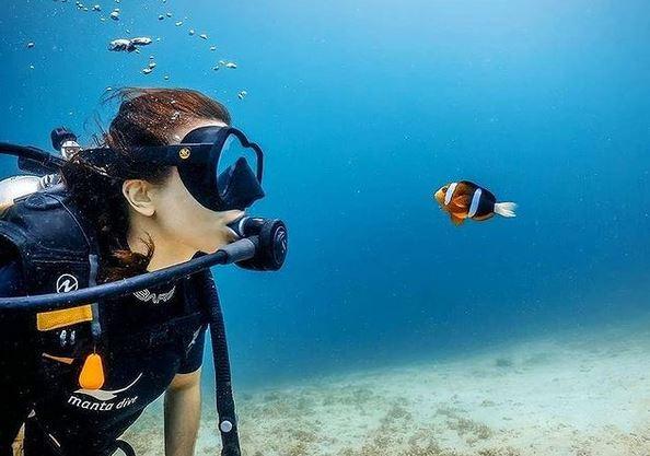 https: img.okezone.com content 2021 02 09 549 2358933 aktivitas-seru-bisa-dilakukan-di-gili-tangkong-pulau-yang-viral-karena-dijual-online-bCisp4a2Gm.JPG