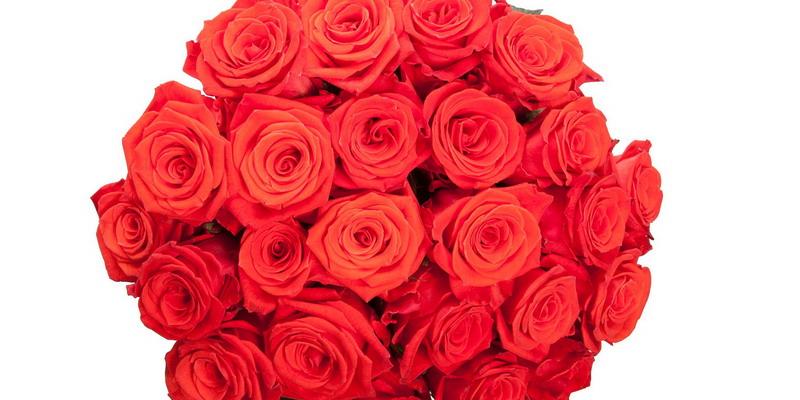 https: img.okezone.com content 2021 02 13 455 2361323 jelang-valentine-bisnis-buket-bunga-dan-cokelat-cuan-puluhan-juta-rvJeFS2OqX.jpg