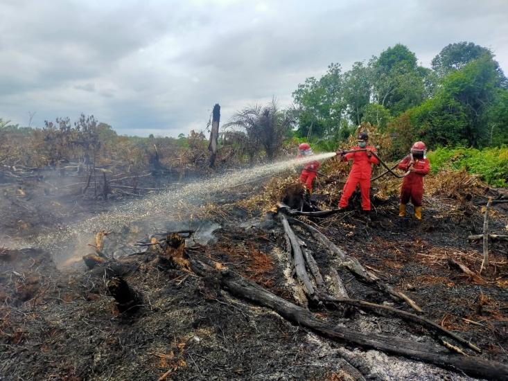 https: img.okezone.com content 2021 02 15 340 2362418 antisipasi-kebakaran-meluas-riau-tetapkan-siaga-darurat-karhutla-XwsHf9AG5y.jpg