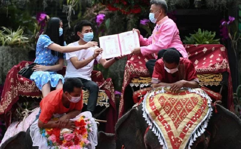 https: img.okezone.com content 2021 02 15 612 2362417 unik-59-pasangan-merayakan-valentine-dengan-menikah-di-atas-gajah-U1VDMlZSDw.jpg