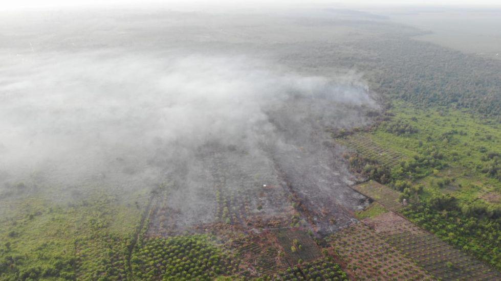 https: img.okezone.com content 2021 02 16 340 2363127 kebakaran-hutan-riau-11-helikopter-water-bombing-disiapkan-rys3iUh6aF.jpg