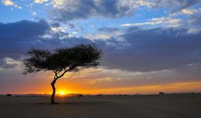 https: img.okezone.com content 2021 02 17 408 2363502 menikmati-pesona-wisata-gurun-di-kota-najran-arab-saudi-D8hoFhDWTm.jpg