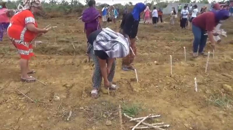 https: img.okezone.com content 2021 02 17 608 2363386 ratusan-petani-tanam-ubi-di-lahan-yang-diratakan-pengembang-C2yjXLuS5X.jpg