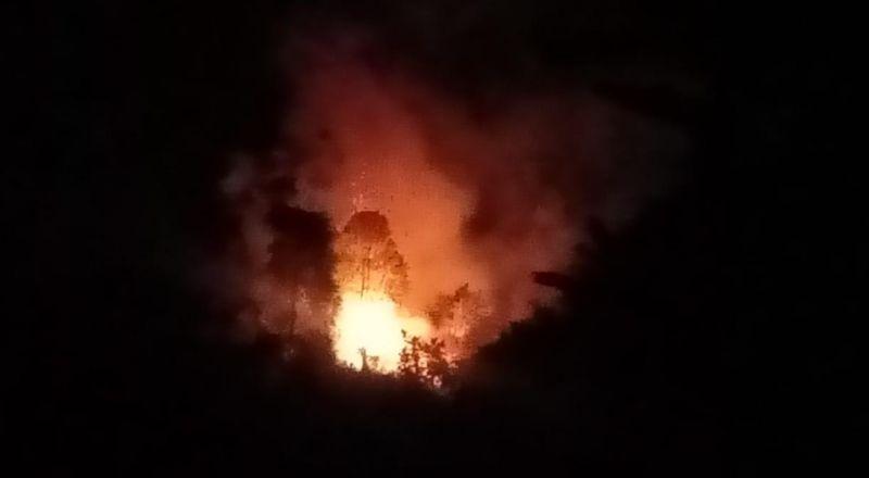 https: img.okezone.com content 2021 02 18 340 2364535 kebakaran-hutan-di-padang-petugas-kewalahan-padamkan-api-hcKxInwri2.jpg