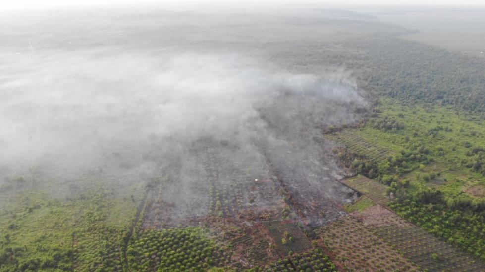 https: img.okezone.com content 2021 02 21 340 2365589 polda-riau-temukan-143-titik-api-kebakaran-hutan-dan-lahan-9zM40Z8s8d.jpg