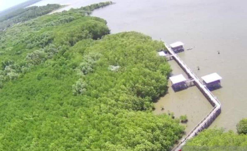 https: img.okezone.com content 2021 02 21 406 2365843 wisata-mangrove-luppung-manyampa-siap-jadi-percontohan-nasional-tuf5phAhwS.jpg