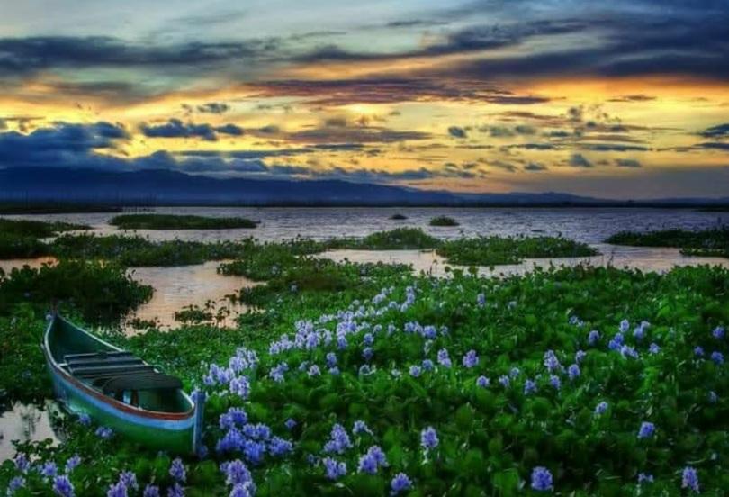 https: img.okezone.com content 2021 02 21 406 2365888 majukan-pariwisata-gorontalo-danau-limboto-bakal-punya-resor-kelas-dunia-FrvAoX6LEG.jpg