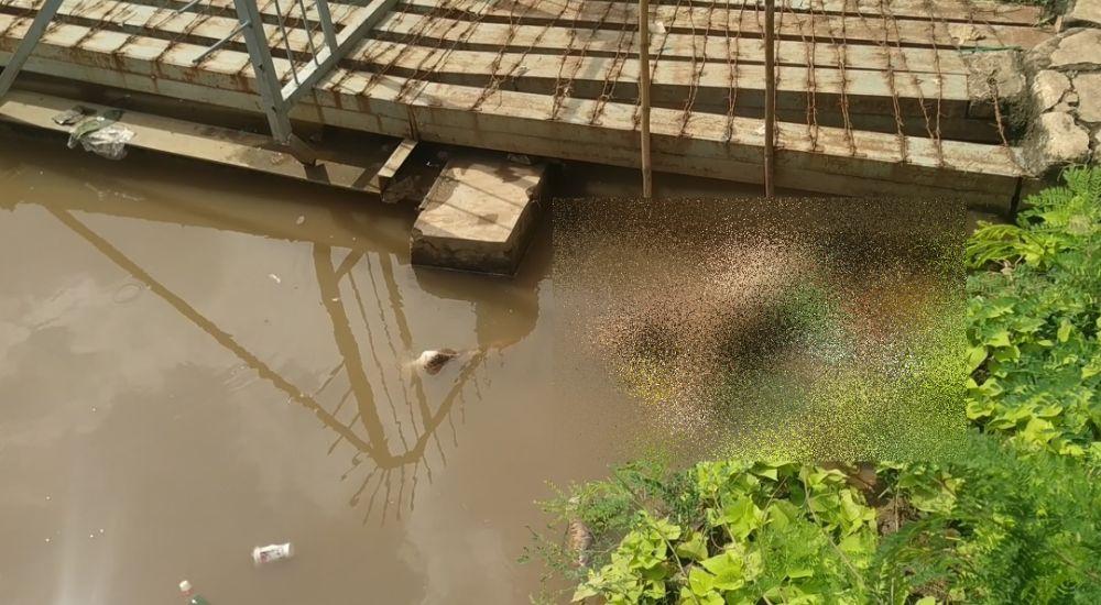https: img.okezone.com content 2021 02 22 338 2366119 mayat-perempuan-pakai-batik-ditemukan-mengapung-di-kali-ancol-Ksz9a3uV2y.jpg