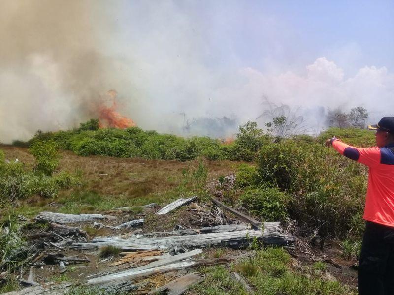 https: img.okezone.com content 2021 02 22 340 2366318 wilayah-lain-kebanjiran-6-hektare-lahan-di-agam-justru-kebakaran-iV4RdeGK4m.jpg