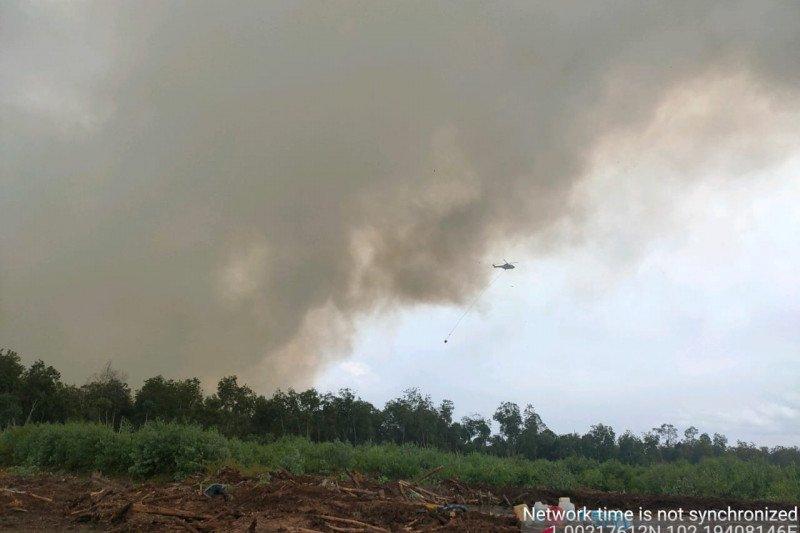 https: img.okezone.com content 2021 02 23 340 2366830 helikopter-berjibaku-padamkan-kebakaran-hutan-di-siak-YnSzlqN65h.jpg