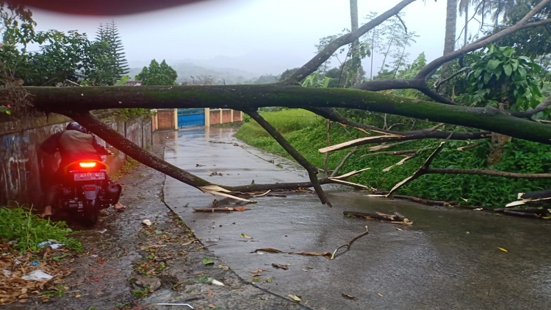 https: img.okezone.com content 2021 03 04 338 2372004 puluhan-rumah-di-megamendung-dan-babakan-madang-bogor-rusak-dihantam-hujan-angin-5vxmRfJTRK.jpg