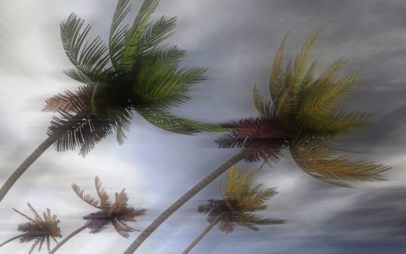 https: img.okezone.com content 2021 03 04 510 2372225 puluhan-rumah-rusak-usai-diterjang-hujan-badai-dM2feYEVQQ.jpg