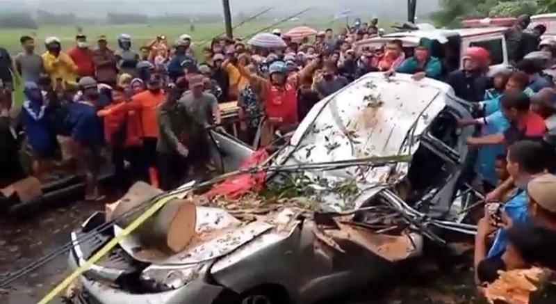 https: img.okezone.com content 2021 03 07 512 2373639 tragis-4-orang-tewas-tertimpa-pohon-tumbang-GP1WGF7DHV.jpg