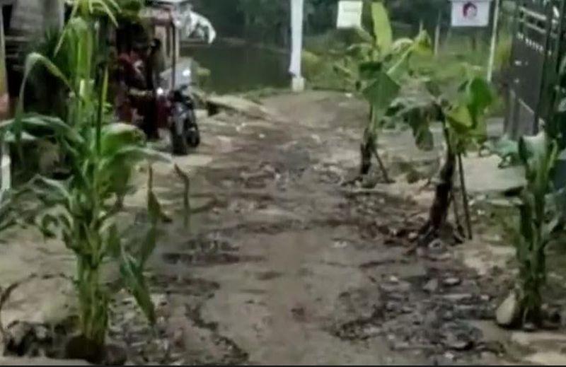 https: img.okezone.com content 2021 03 12 525 2376488 viral-guru-dimaki-maki-gegara-posting-jalan-rusak-ditanam-pohon-pisang-3abaINP9x0.jpg
