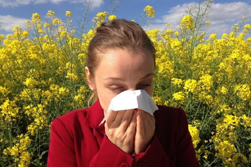 https: img.okezone.com content 2021 03 13 620 2377083 studi-paparan-serbuk-sari-bunga-tingkatkan-risiko-terinfeksi-covid-19-f9Rs4vqs4D.jpg