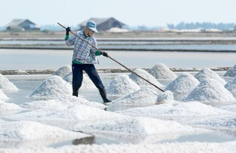 https: img.okezone.com content 2021 03 20 320 2381171 punya-garis-pantai-terpanjang-kedua-di-dunia-dan-ri-impor-garam-cek-faktanya-b4paeoPlIW.jpg
