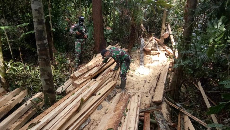 https: img.okezone.com content 2021 03 21 340 2381619 satgas-yonif-642-amankan-kayu-hasil-illegal-logging-di-wilayah-perbatasan-vW5qgYqJqO.jpg