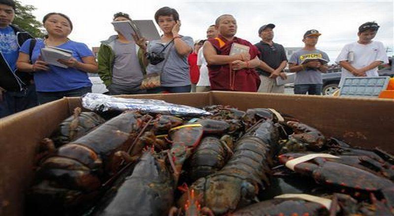 https: img.okezone.com content 2021 03 25 320 2383738 kkp-grebek-gudang-benih-84-589-ekor-lobster-ilegal-di-tangerang-nykw8spiSg.jpg