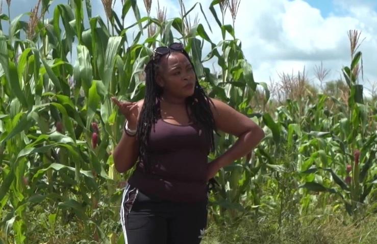 https: img.okezone.com content 2021 03 26 18 2384281 sepi-job-saat-pandemi-covid-19-penyanyi-beralih-ke-pertanian-untuk-cari-penghasilan-RIqC1ZfUWP.jpg