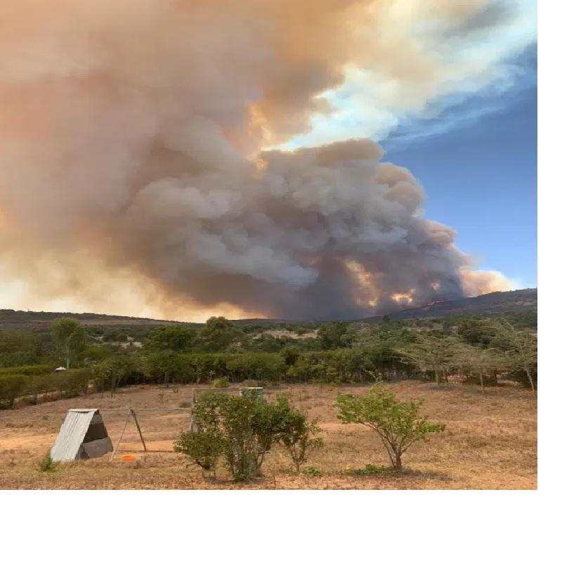 https: img.okezone.com content 2021 03 26 18 2384439 angkatan-darat-diduga-sulut-kebakaran-di-cagar-alam-seluas-10-000-hektar-L5nQz7ZCqh.jpg