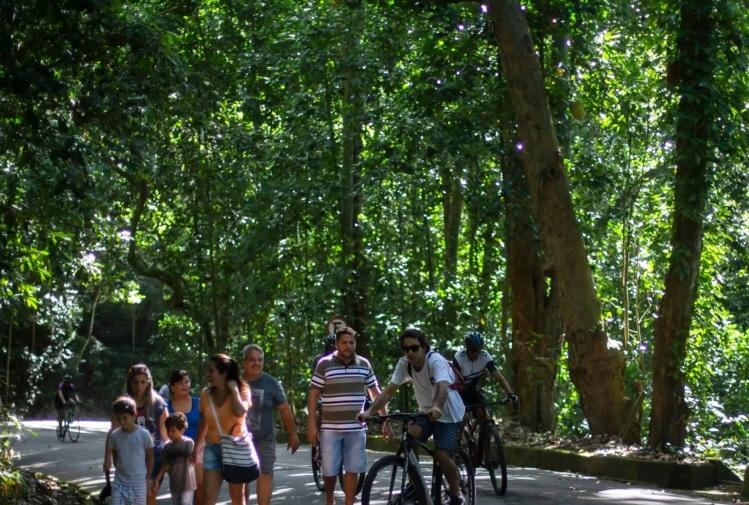 https: img.okezone.com content 2021 04 01 18 2387820 dunia-kehilangan-hutan-seukuran-negara-belanda-DqmhfnhbZp.jpg