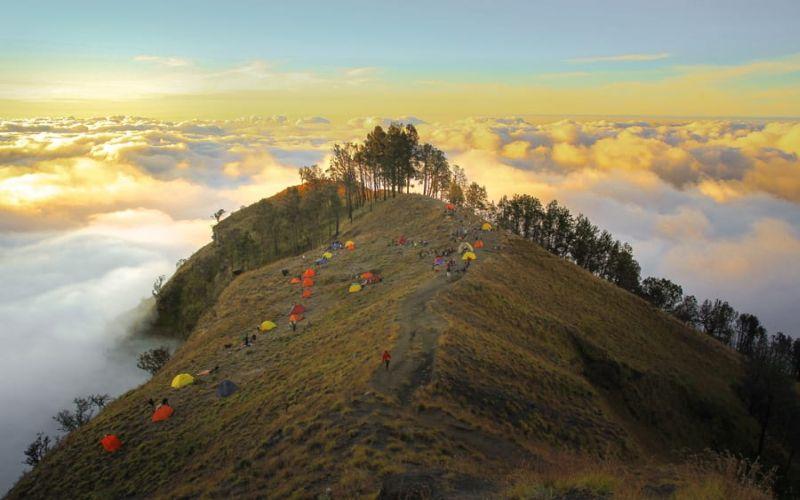 https: img.okezone.com content 2021 04 01 406 2387809 dibuka-mulai-hari-ini-begini-aturan-pendakian-gunung-rinjani-dan-tambora-Up34W9ADHE.jpg