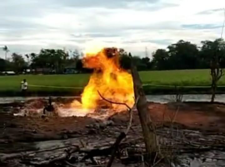 https: img.okezone.com content 2021 04 03 525 2388799 indramayu-kembali-gempar-api-berkobar-di-tengah-persawahan-3pYhgtGyu3.jpg