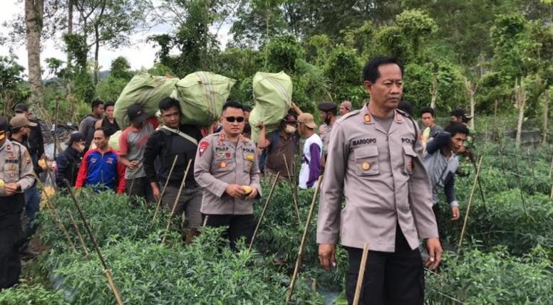 https: img.okezone.com content 2021 04 04 340 2389146 miliki-ladang-ganja-guru-sd-di-bengkulu-ditangkap-polisi-0J150A2PcC.jpg