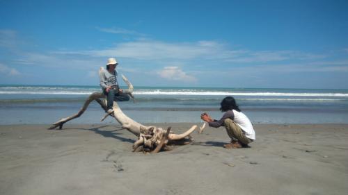 https: img.okezone.com content 2021 04 04 406 2389061 pantai-pantai-ini-potensial-jadi-taman-wisata-alam-is1DSccRsT.jpg