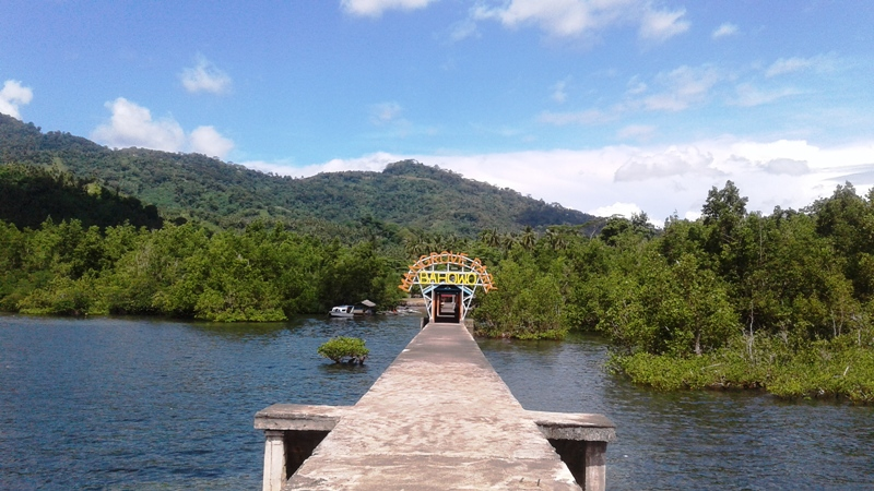 https: img.okezone.com content 2021 04 08 320 2391424 sri-mulyani-transfer-rp43-miliar-menteri-kkp-rehabilitas-2-400-ha-hutan-mangrove-V8qekijwZ4.jpg